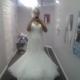 1375144052_small_thumb_f2d5703dfa19e6aecf90530adfc3613e