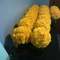 Flowers & Decor, yellow, Flowers, Pompanders