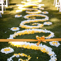 Ceremony, Flowers & Decor, yellow, Petals, Aisle, Ashley mark