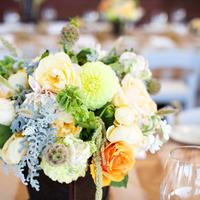 Flowers & Decor, white, orange, blue, Centerpieces, Flowers, Centerpiece, Table, Peach, Ashley mark
