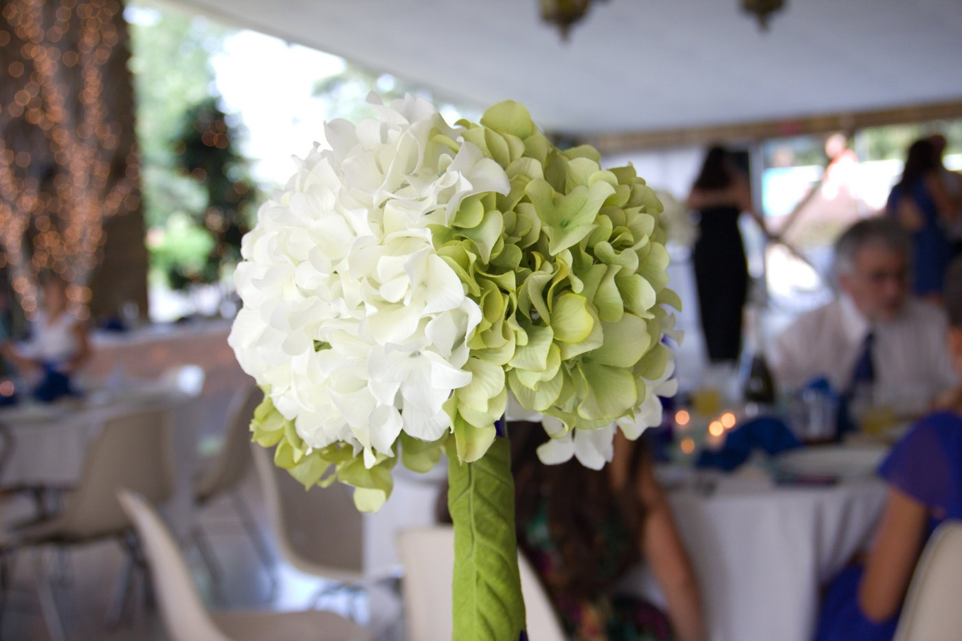 Reception, Flowers & Decor, white, blue, green