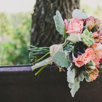 pink, Bouquet, Roses, Coral, Rachel craig