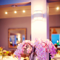 Reception, Flowers & Decor, Cakes, pink, cake, Flowers, Orchids, Kristin broen