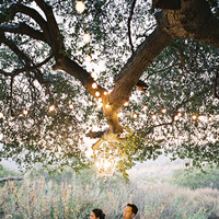 Reception, Flowers & Decor, Lighting, Table, Tree, Chandelier, Love, Diana john, Diana j