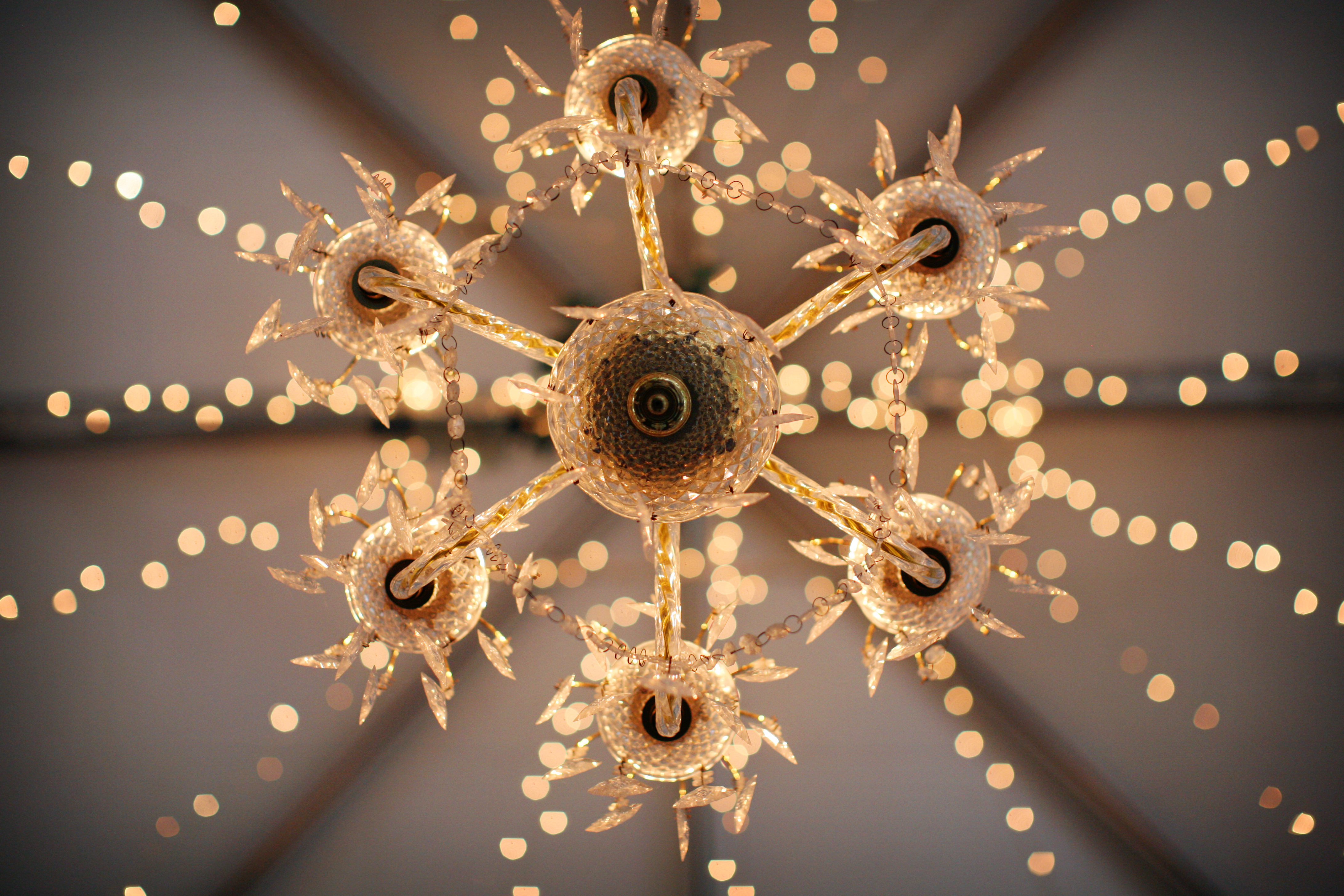 Lighting, Chandelier, Lights, String, Glow, Courtney sawyer