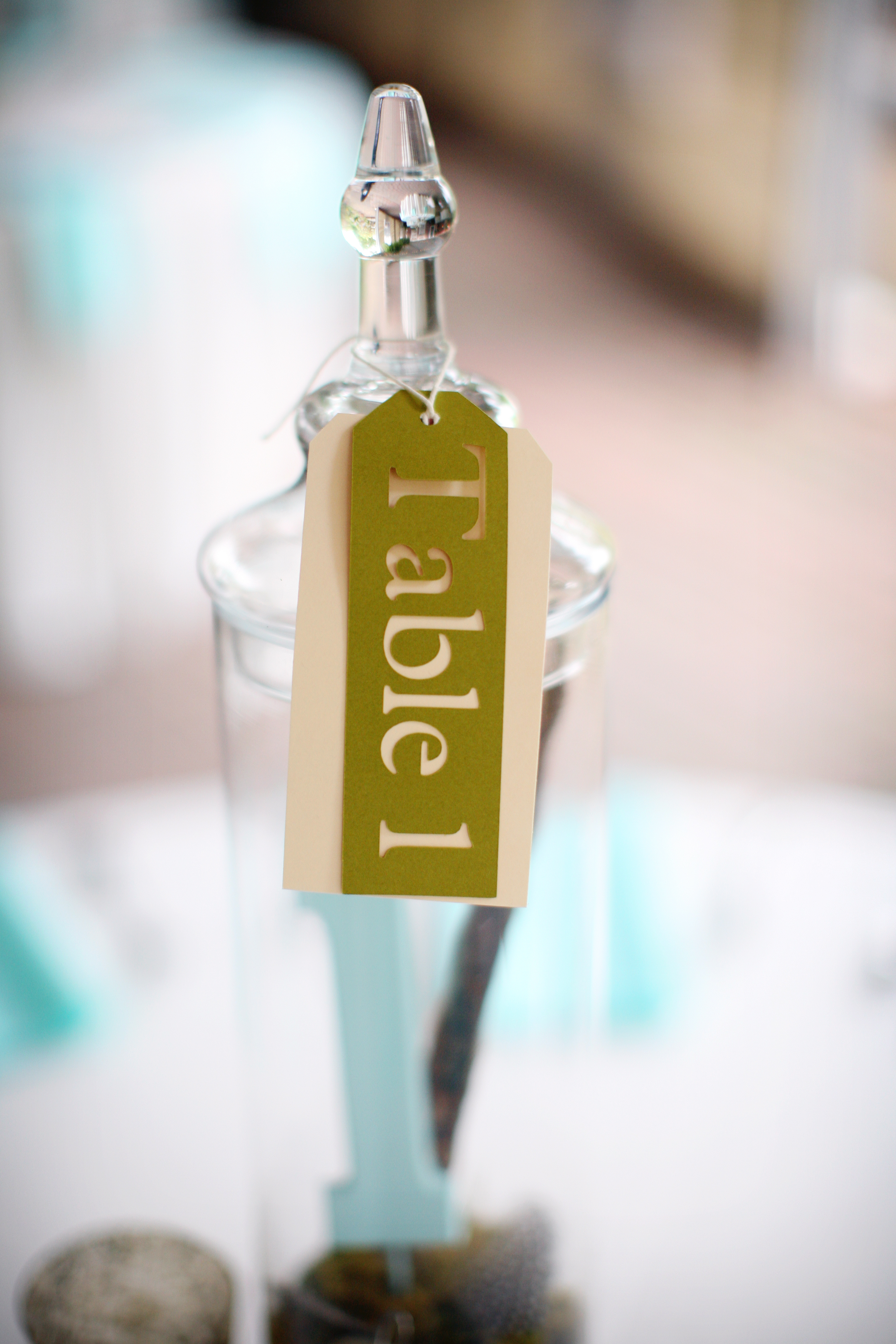 Rustic, Table Numbers, Centerpiece, Table, Number, Aqua, Courtney sawyer