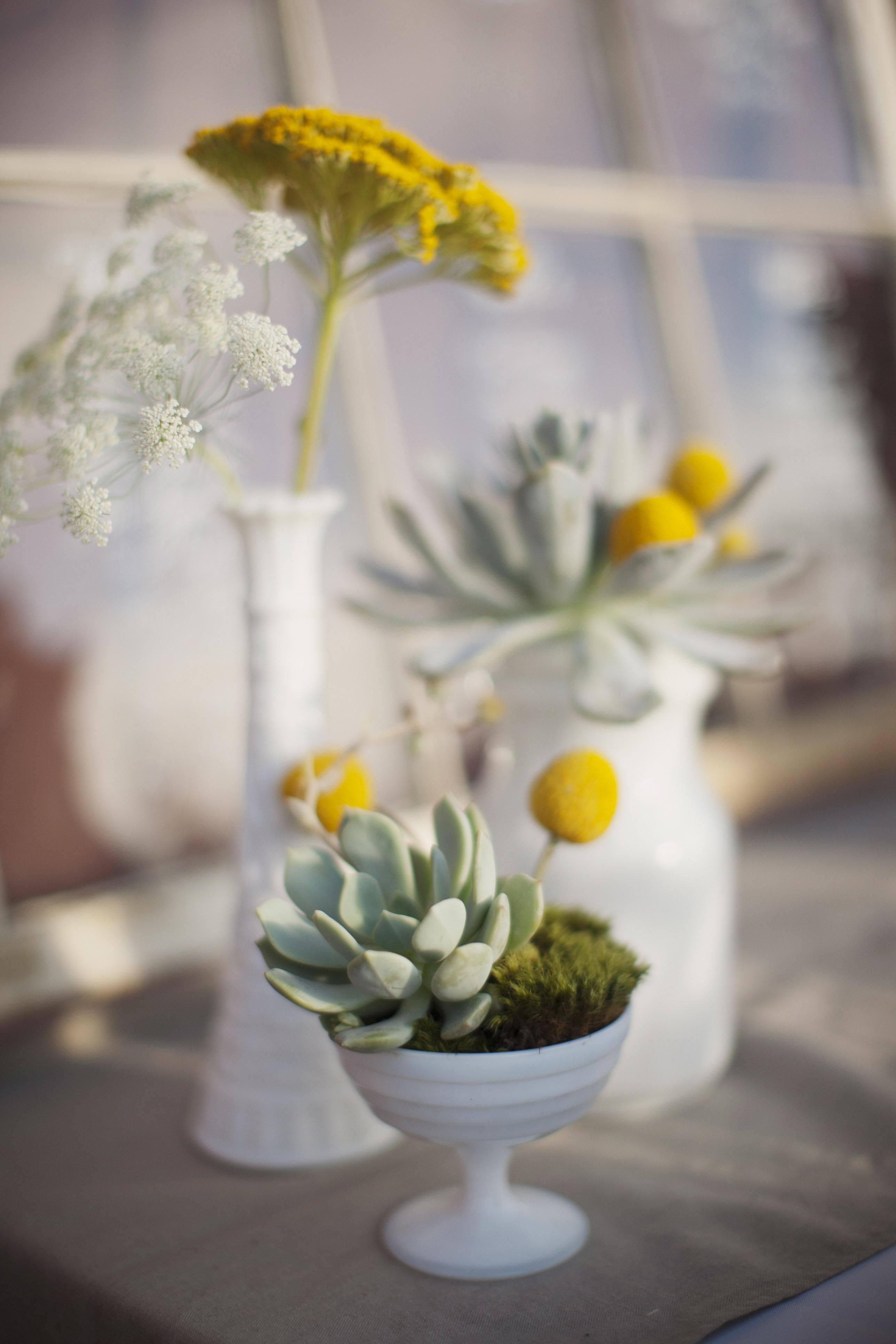 Flowers & Decor, Decor, white, yellow, Vases, Billy, Balls, Andrea eric