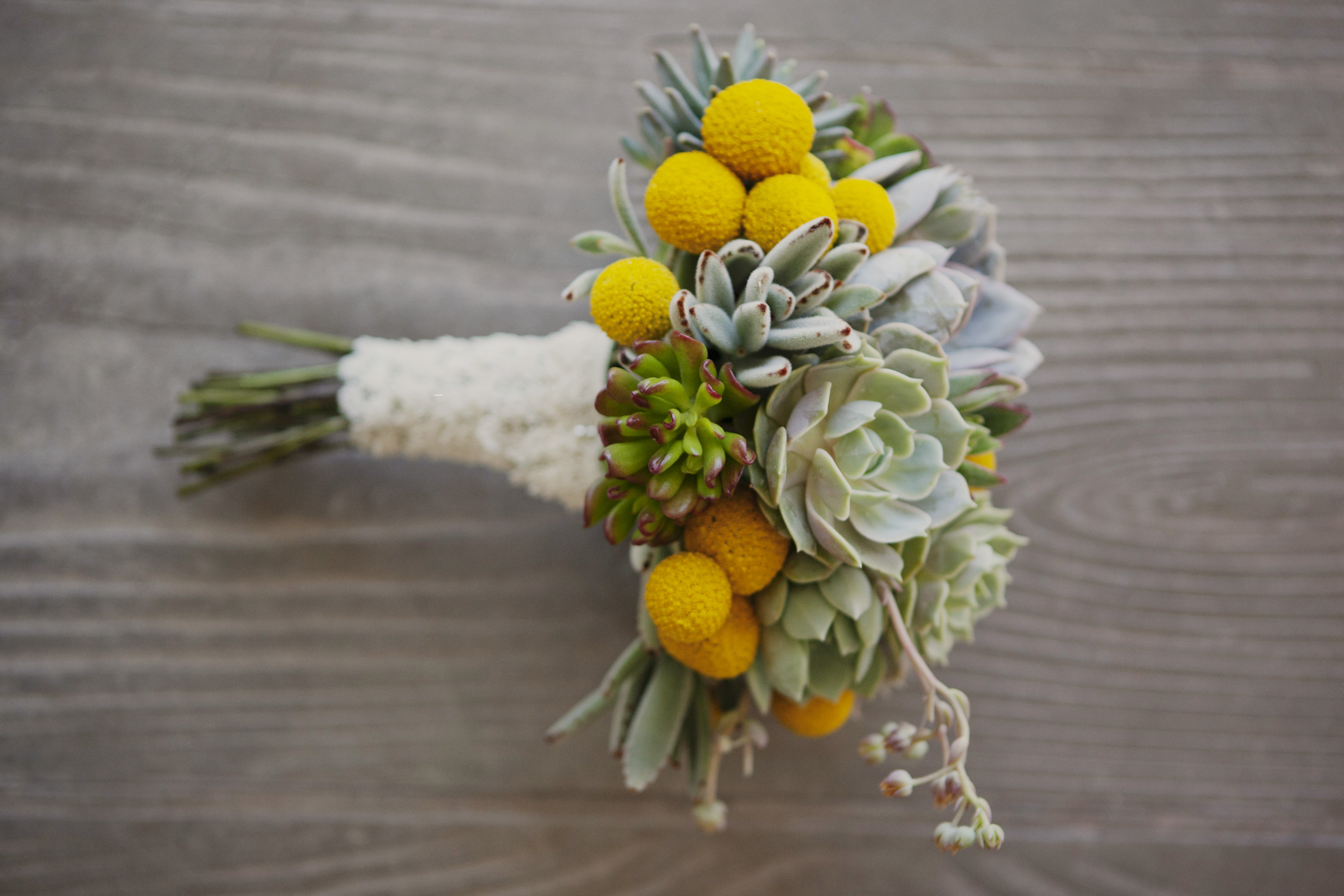yellow, Bouquet, Billy, Balls, Succulent, Andrea eric