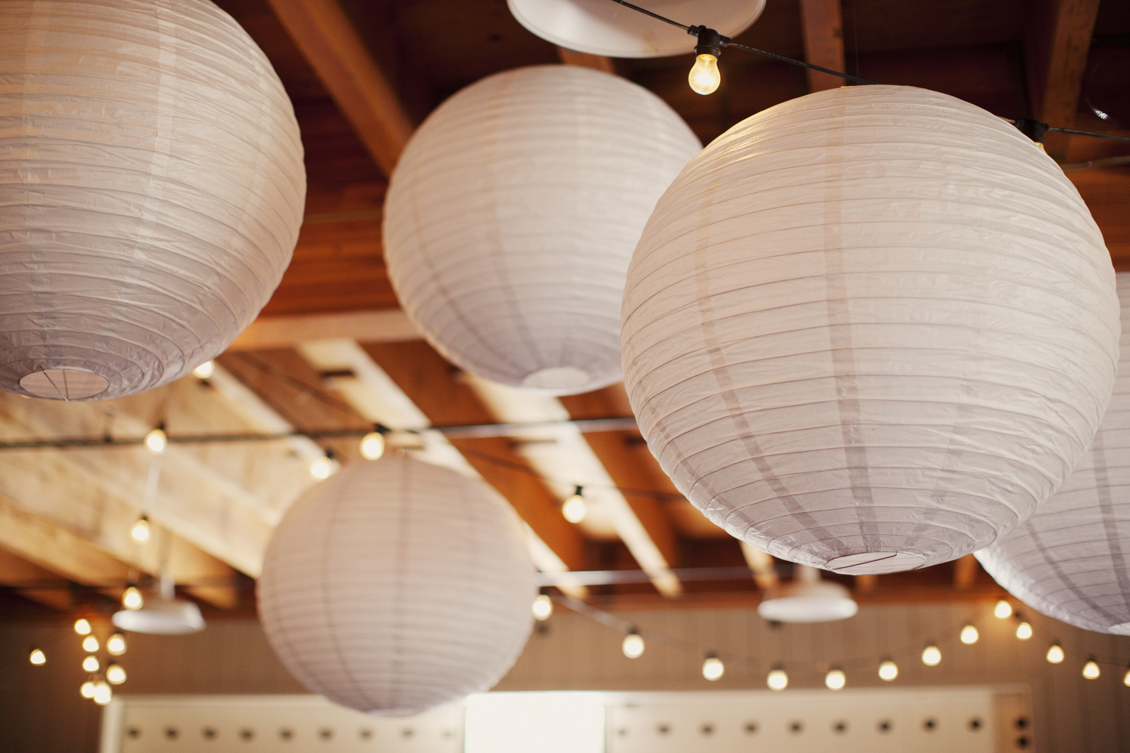 Reception, Flowers & Decor, Paper, white, Lanterns, Lights, String, Andrea eric