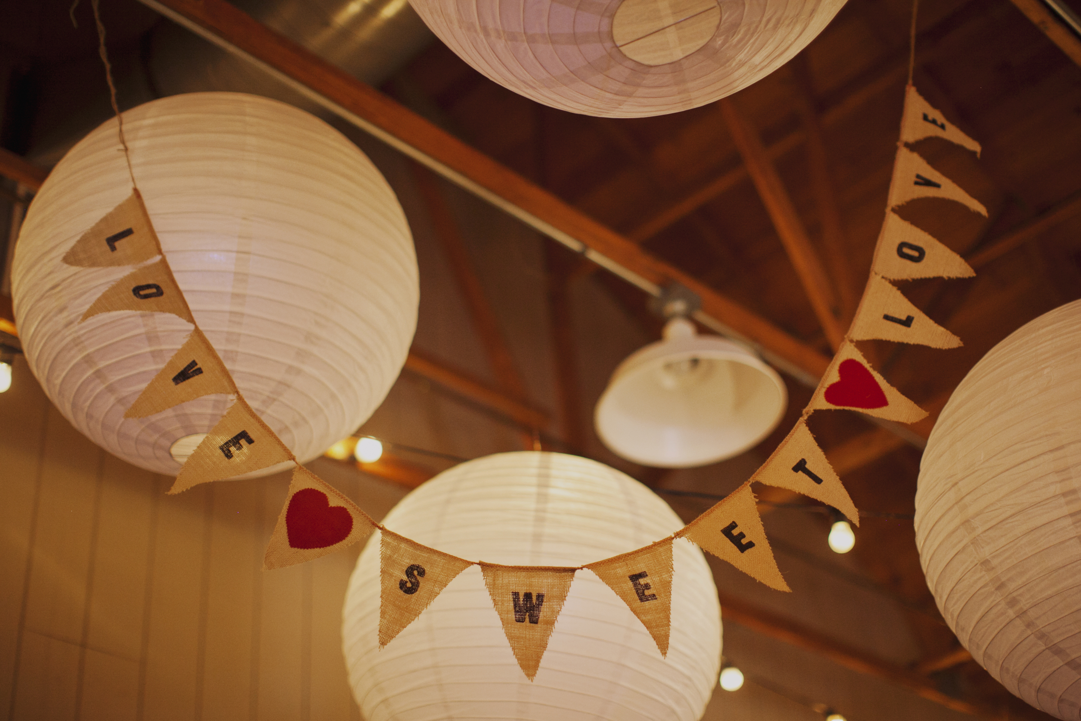 Reception, Flowers & Decor, Decor, Paper, Lanterns, Pennant, Andrea eric