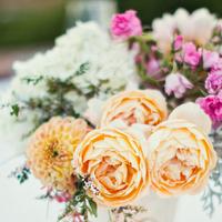 white, pink, Centerpieces, Peach, Vases, Ranunculus, Chrysanthemums, Jeanne johnhan
