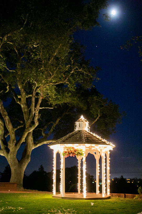 Reception, Flowers & Decor, California, santa, Cruz, Moonlight, Jeanne johnhan
