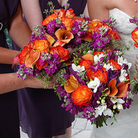 Flowers & Decor, white, orange, purple, Flowers