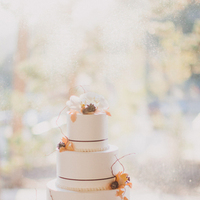 Cakes, white, ivory, pink, cake, Fall, Wedding, Champagne, Leaves, Tiers, Katelyn brad