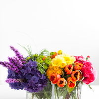 Flowers & Decor, yellow, orange, pink, purple, blue, green, Flowers