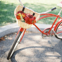 Flowers & Decor, red, Summer, Flowers, Bike, Colleen zachary