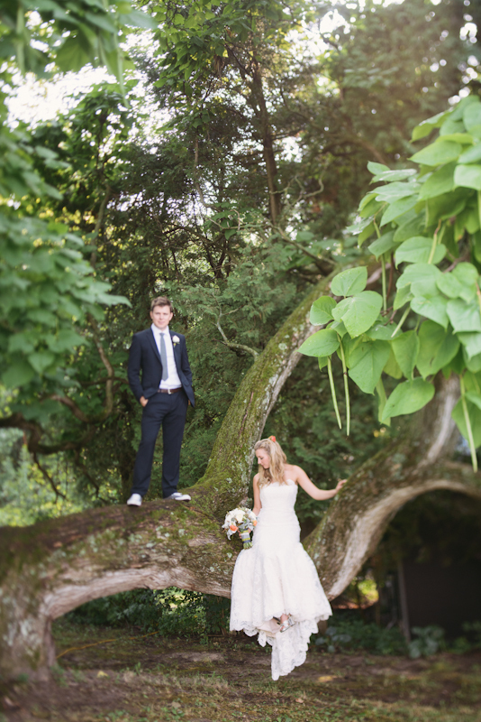 Bride, Groom, Portrait, And, Tree, Creative, Lissa paul