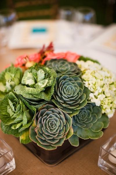 Reception, Flowers & Decor, green, Centerpieces, Outdoor, Centerpiece, Cream, Hydrangea, Succulent, Chalinee craig