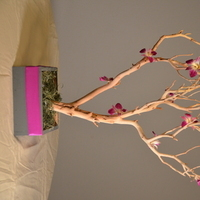 Flowers & Decor, purple, Centerpieces, Flowers, Centerpiece, Manzanita