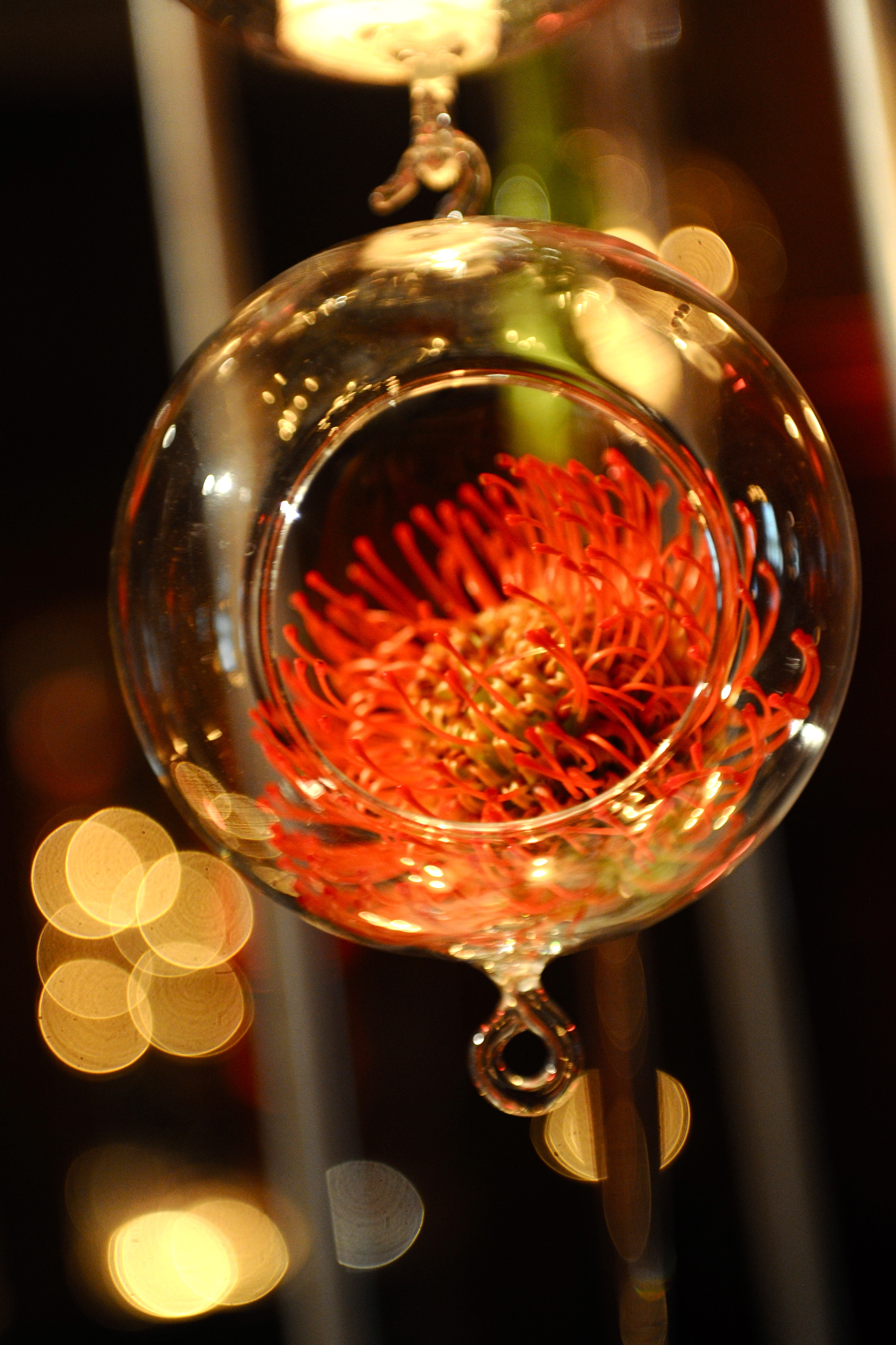 Reception, Flowers & Decor, orange, Flowers, Wedding, Coral, Protea, Décor, Persephone eddie