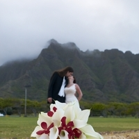 Flowers & Decor, Destinations, red, Hawaii, Flowers, Lilies, Lily, Cala