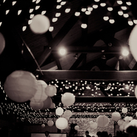 Reception, Flowers & Decor, Paper, white, Lighting, Lanterns, I, Spy
