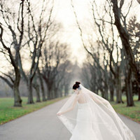 Veils, Romantic Wedding Dresses, Fashion, white, Bride, Veil, Romantic, Vera, Wang, Bare, Trees, Meagan david