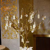 white, Classic, Cards, Escort, Branches, Tree, Chicago, Natalia michael