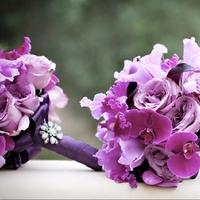 Flowers & Decor, purple, Flowers
