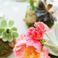 Questions to Ask the Florist Before the Wedding