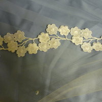 DIY Wedding Challenge 2010: Lace edged veil