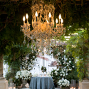 1375152389_thumb_roses-in-chandelier