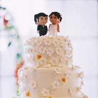 DIY Wedding Challenge 2010: Cake Topper Us!