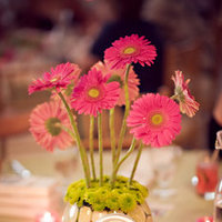 Tablescape of the Week - Plumcrush01