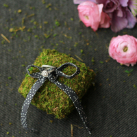 DIY: Moss Ring Pillow