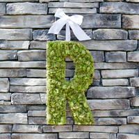 DIY: Custom Moss Monogram