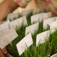 DIY: A Wheat Grass Wedding