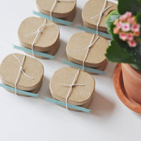 DIY: Springtime Seedling Favors