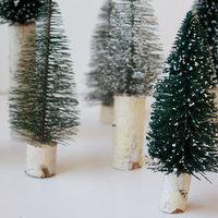 DIY: Miniature Tree Decor