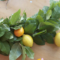 DIY: Making a Lemon Leaf Garland