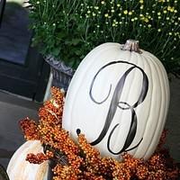 Ceremony, Reception, Flowers & Decor, white, orange, Ceremony Flowers, Flowers