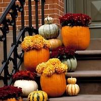 Ceremony, Reception, Flowers & Decor, orange, red, green, Ceremony Flowers, Flowers
