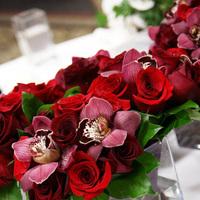 Bridesmaids, Bridesmaids Dresses, Fashion, red, Irises designs