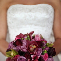 Flowers & Decor, pink, burgundy, purple, green, black, Flowers, Cymbidium, Fullerton, Art with nature floral design, Green cymbidium orchid, Purple roses, Summit house, Cymbidium orchids, Bacarra, Burgundy cymbidium, Black calla, Black calla lily