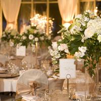 Reception, Flowers & Decor, gold, Centerpieces, Centerpiece