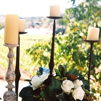 Flowers & Decor, white, green, Vineyard, And, Beige, Film, Earthy, Kim brandt