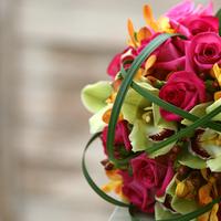 Flowers & Decor, Bride Bouquets, Flowers, Bouquet, Brides, Kristin jones weddings