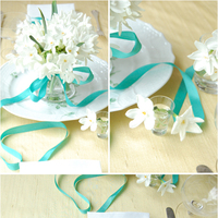A Lovely Teal Table Setting