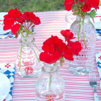 DIY: Red White and Blue Picnic