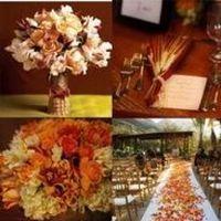 Ceremony, Reception, orange